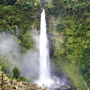 Airbnb Hawaii Hilo