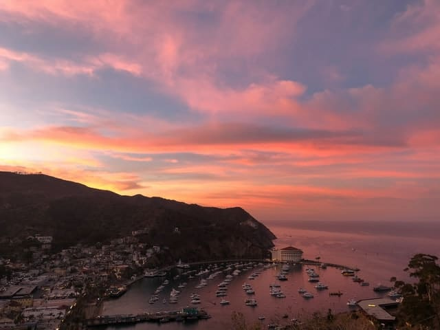 Wow! We found the Best Airbnb Santa Catalina Island Rentals. Save time searching!