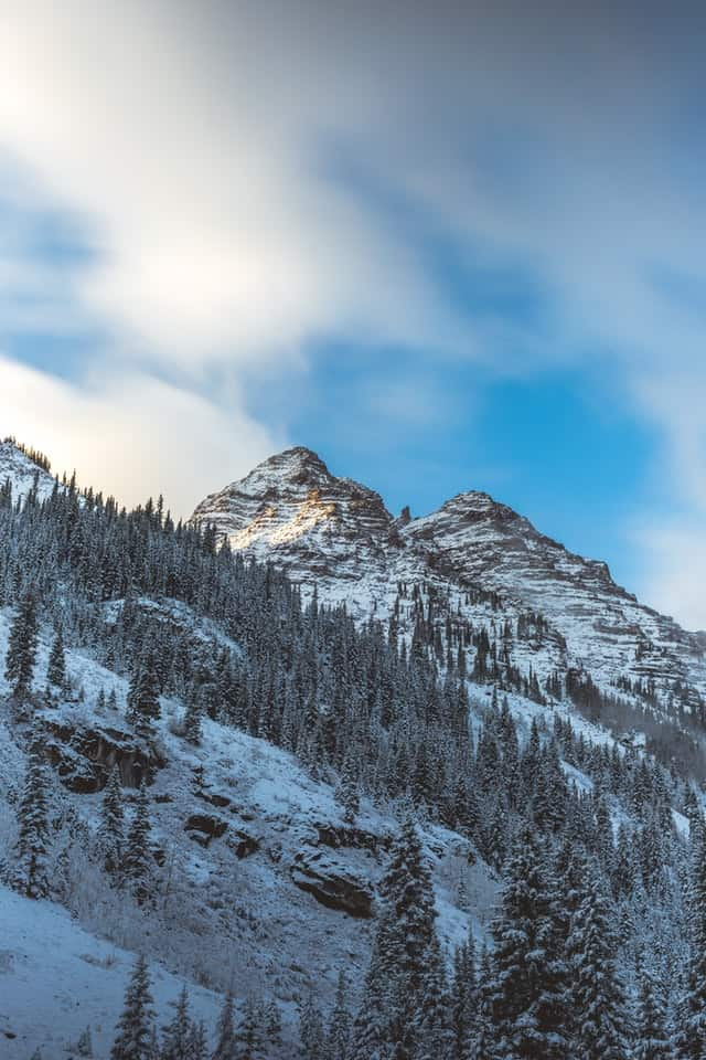 Wow! We found the Best Airbnb Aspen Colorado Rentals. Save time searching!