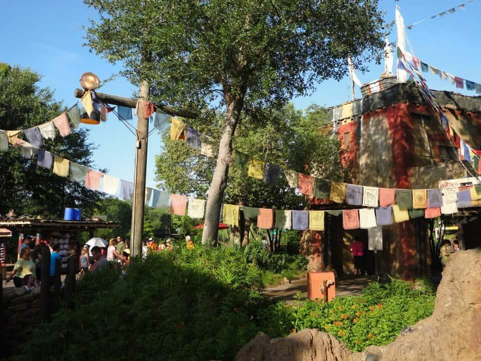 Everest ride at Animal Kingdom Walt Disney World