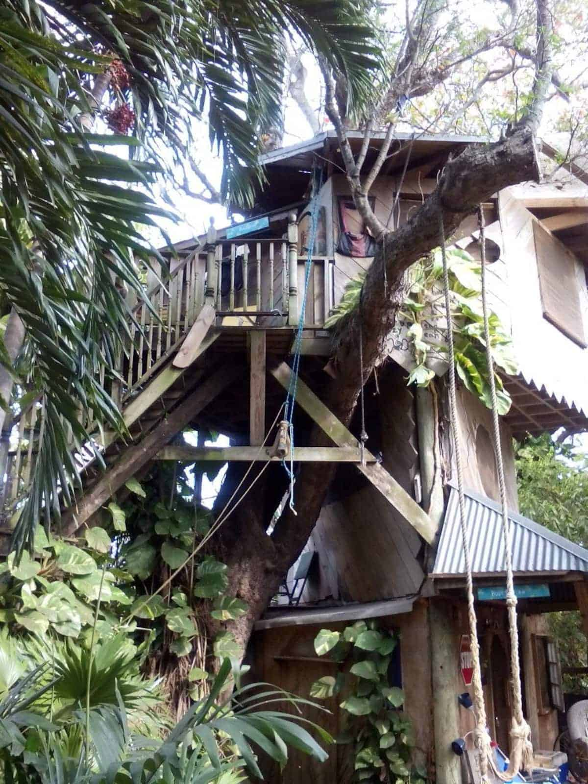 Image of treehouse rental in Florida