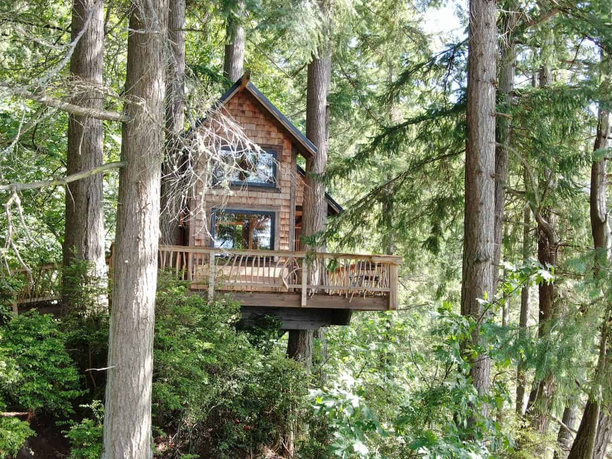 Image of treehouse rental in Washington