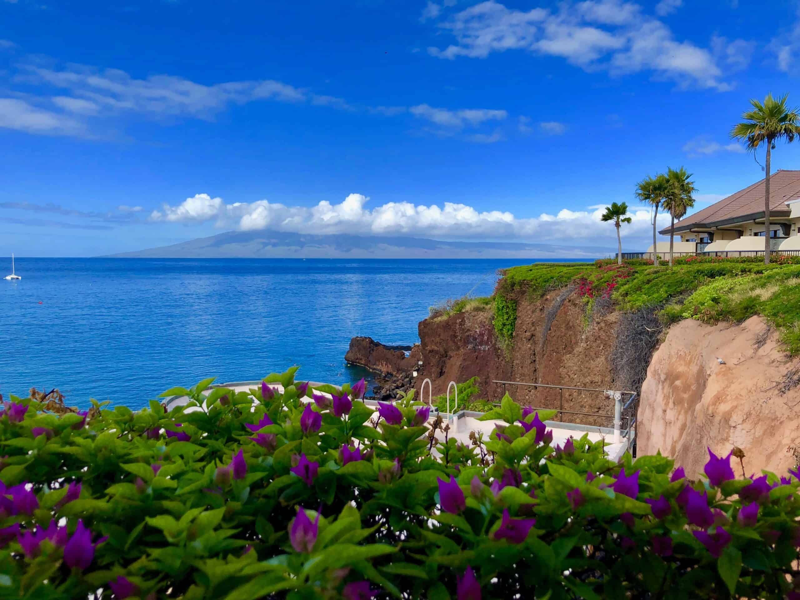 Wow! We found the Best Airbnb Kaanapali, Hawaii Rentals. Save time searching!