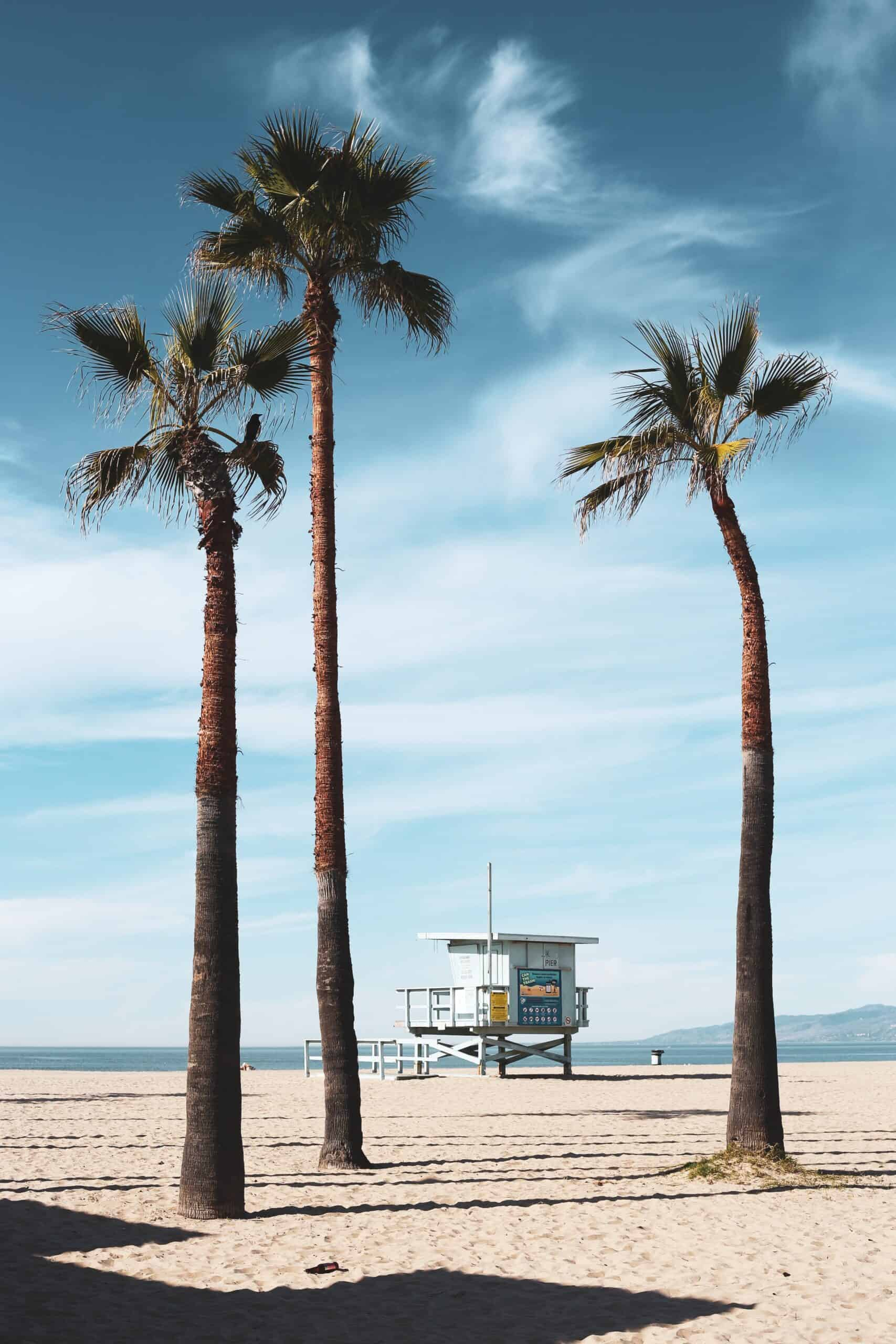 Wow! We found the Best Airbnb Venice Beach, California Rentals. Save time searching!