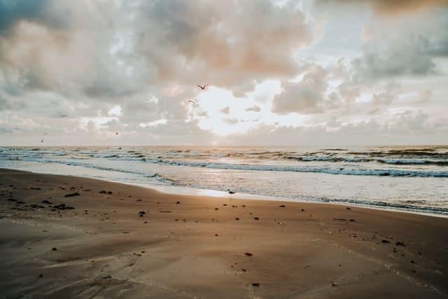 Beach in Texas