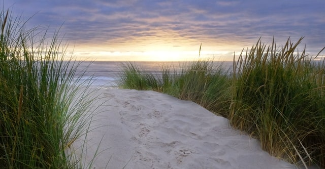 Wow! We found the Best Airbnb on beach Oregon. Save time searching!